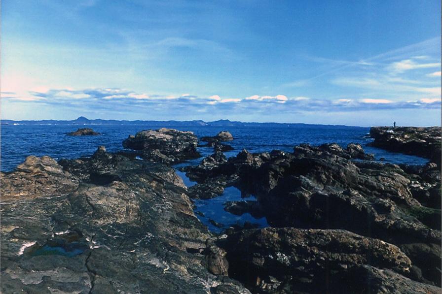 剣崎の海岸