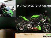 ちょうどいい、という高性能 Kawasaki Ninja650