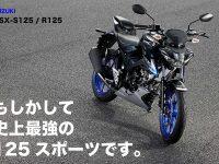 もしかして 史上最強の 125スポーツです。 SUZUKI GSX-S125/R125